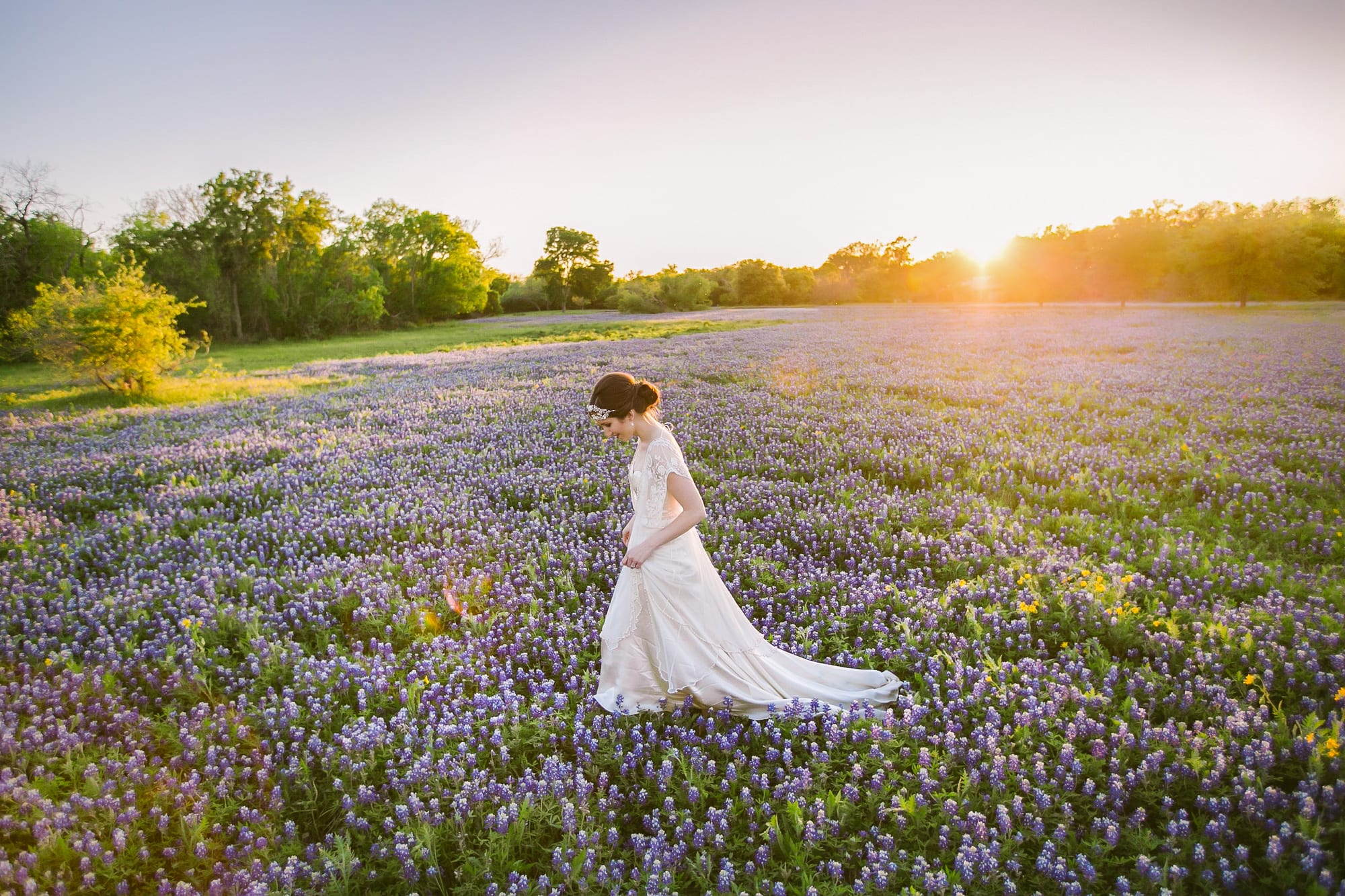 Bride walks through field of bluebonnets at sunset