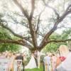 Oak_Tree_Manor