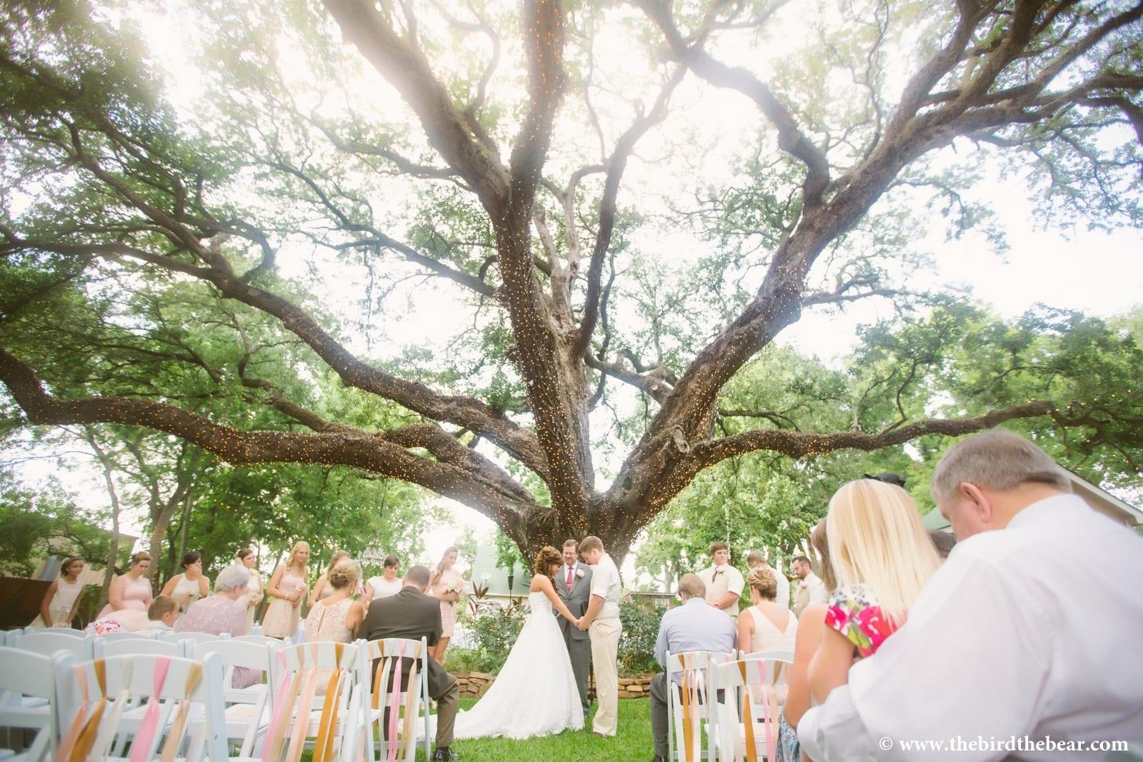Oak Tree Man... Oak Tree Symbolism Marriage