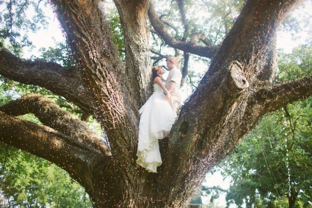 Oak_Tree_Spring_TX