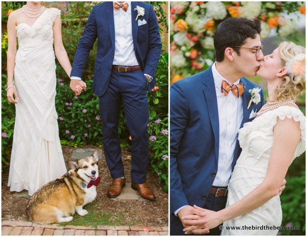 dog ringbearer