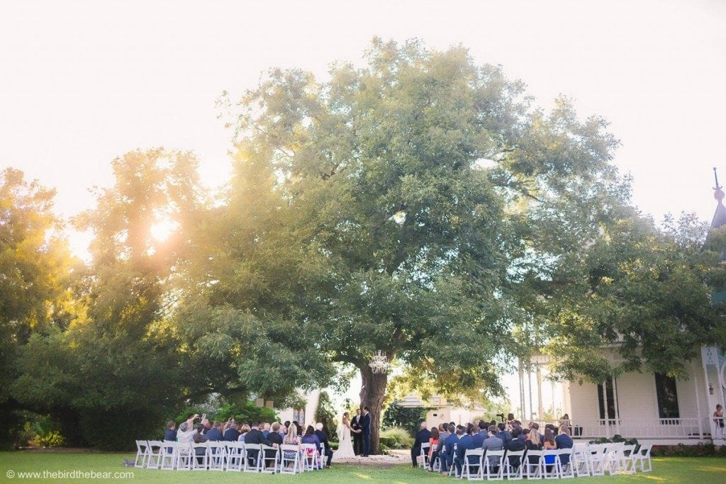 Beautiful wedding ceremony under a large oak tree at Barr Mansion in Austin, TX