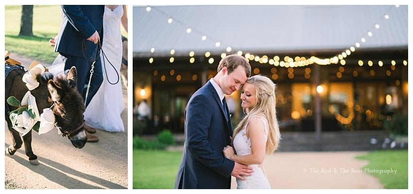 Pecan Springs Ranch Wedding Photography