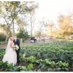 Springdale Farm Wedding Photographer